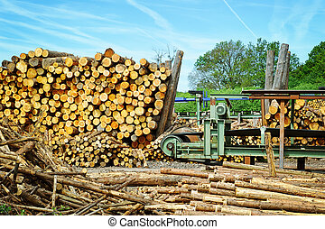 Sawmill (lumber mill) at sunny summer day