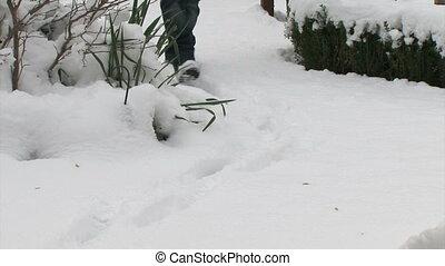 Man walking on fresh snow