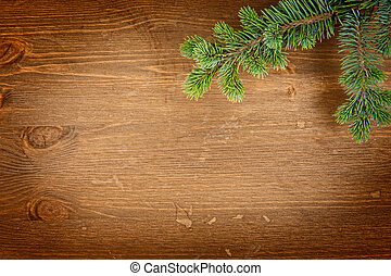 fir tree on the wooden background