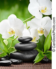 spa concept - zen basalt stones and orchid on the wood