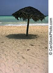 republica dominicana coastline - republica dominicana ocean...