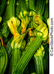 Fresh zucchini courgettes with yellow flowers