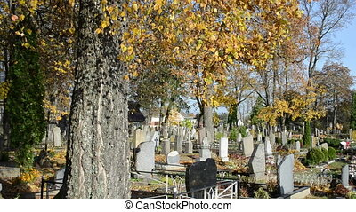 people care family grave - People care family grave in...