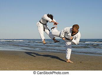 Taekwondo, Kickboxing