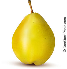 Rpe pear isolated on white Vector illustration