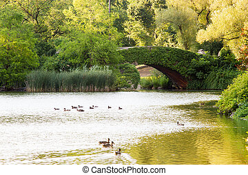 Gapstow Bridge, Central Park, New York - The Gapstow Bridge...