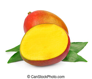 Mango fetus fruit on a white background.Tropic fruits