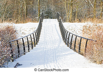 Metal bridge covered in snow