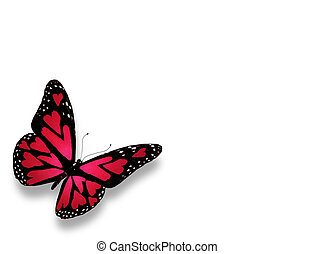 Pink butterfy with hearts on wings, isolated on white