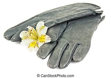 warm leather gloves and flower