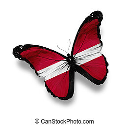 Latvian flag butterfly, isolated on white