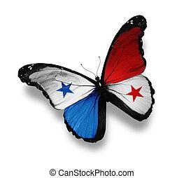 panameño, bandera, mariposa, aislado, blanco