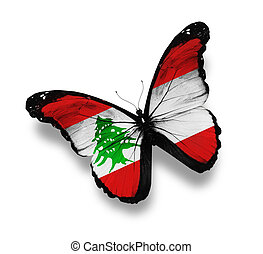Lebanese flag butterfly, isolated on white