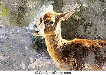 Artistic image with background texture deer head