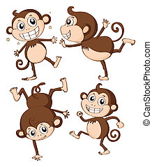 Four monkeys - Illustration of monkeys on a white background