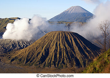 Vulcanos in caldera and tree, Java, Indonesia...