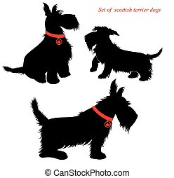 Set of of scottish terrier dogs silhouettes