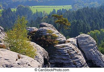 mountain Gamrig 13