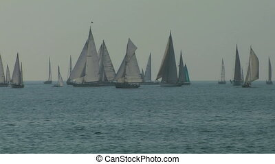 old sail regatta 03 - Old sailing boat in Mediterranean Sea...