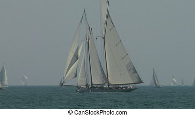 old sail regatta 06 - Old sailing boat in Mediterranean Sea...