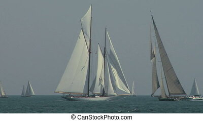 old sail regatta 08