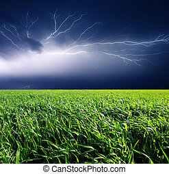 Thunderstorm with lightning in green meadow Dark ominous...