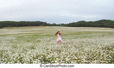 Bouquet of daisies - Woman picking daisies for a bouquet