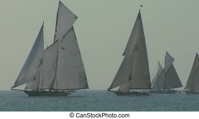 old sail regatta 15 - Old sailing boat in Mediterranean Sea...