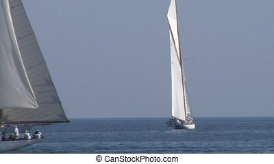 old sail regatta 22