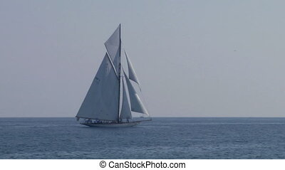 old sail regatta 25 - Old sailing boat in Mediterranean Sea...