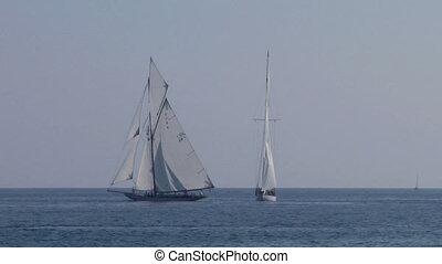 old sail regatta 26