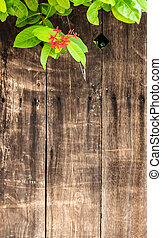 Weathered Wood Background with Red Flower and Green Leaves...