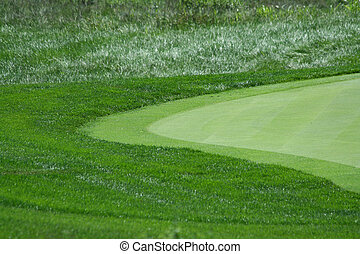 Golf green with rough and fringe