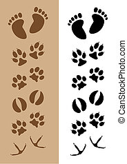 Footprints - Assortment of 6 different sets of footprints,...
