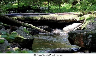 mountain stream - Mountain stream with sound