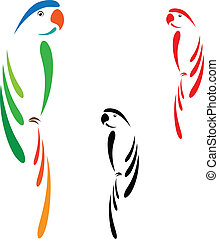 Parrot a white background