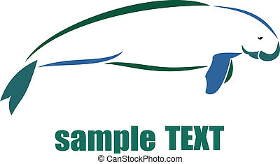 Dugong on white background, vector