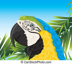Parrot among palm branches. Vector illustration