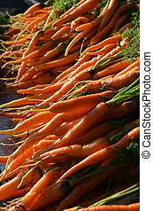 Carrot  fruit on Traditional Market