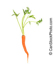 Raw Carrot - Raw carrot with green leaf top, over white...