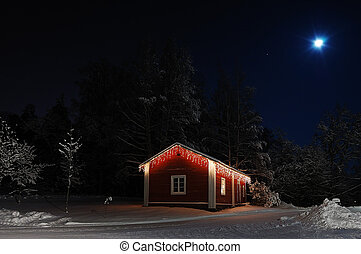 Christmas house  - Beautiful Christmas house in moonlight