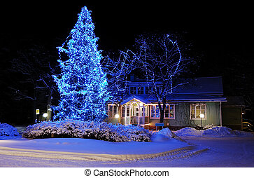 Beautifully decorated Christmas tree - Marvelous Christmas...