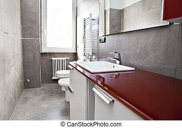 Red bathroom with toilette, bidet, heater, lavabo and mirror...