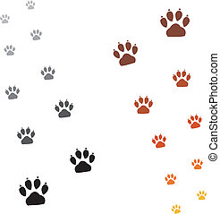 Illustration animals paws print on a white background
