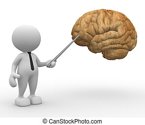 Brain - 3d people - man, person pointing a brain