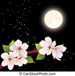vector cherry branch and moon