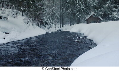 River stream in winter forest