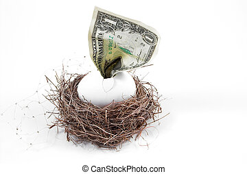 Nest Egg - A dollar bill hatching from an egg in a nest