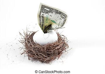 Nest Egg - A dollar bill hatching from an egg in a nest.