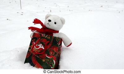 teddy bear snow christmas - white plush teddy bear in...